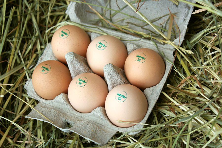 Demeter-Eier von Sussex Hühnern