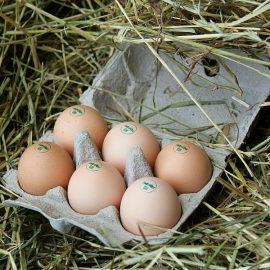 An alle, die Demeter-Eier vom Randenhof mögen