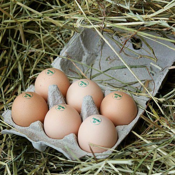 Demeter-Eier