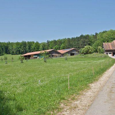 Der Randenhof