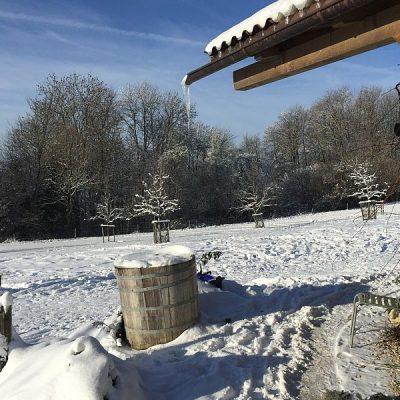 Winterblick auf die Hausweide