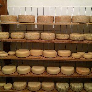 Unser natürlich klimatisiertes Käselager