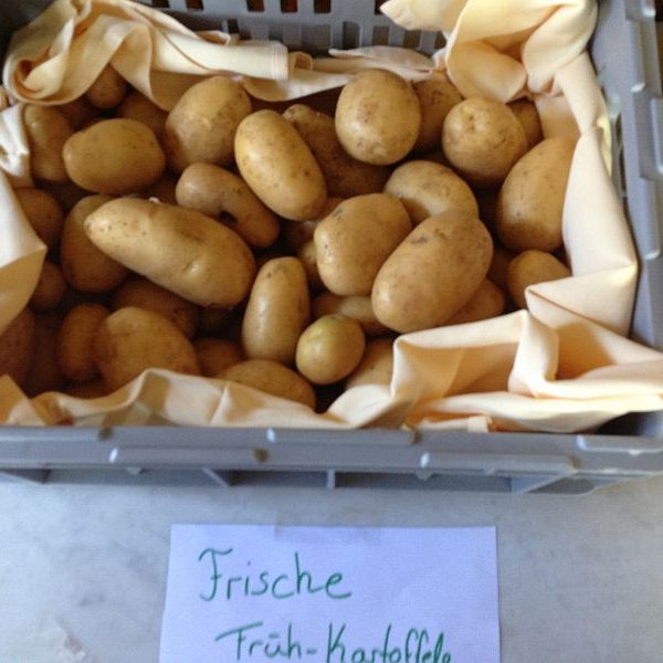 Frühkartoffeln Agata