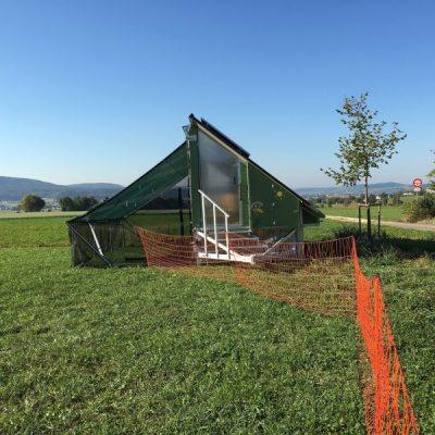 Hof am Stei: Mobiler Stall für 250 Legehennen