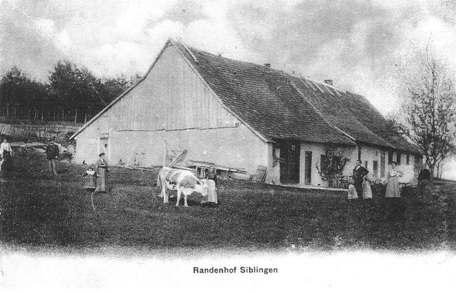 Randenhof Ende 19. Jh