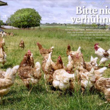 Suppenhuhn-Reportage im Landliebe-Magazin